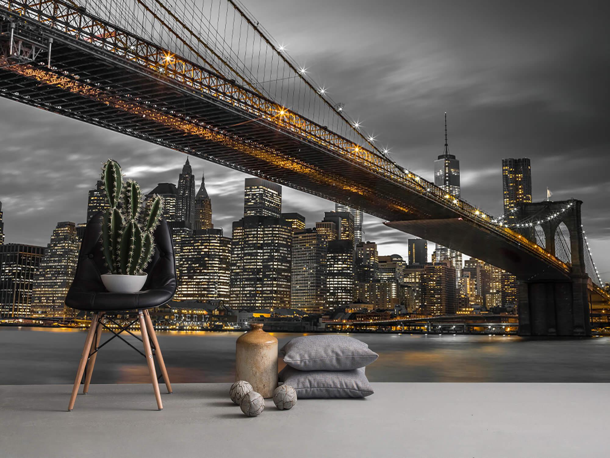 Pont de Brooklyn, New York 9