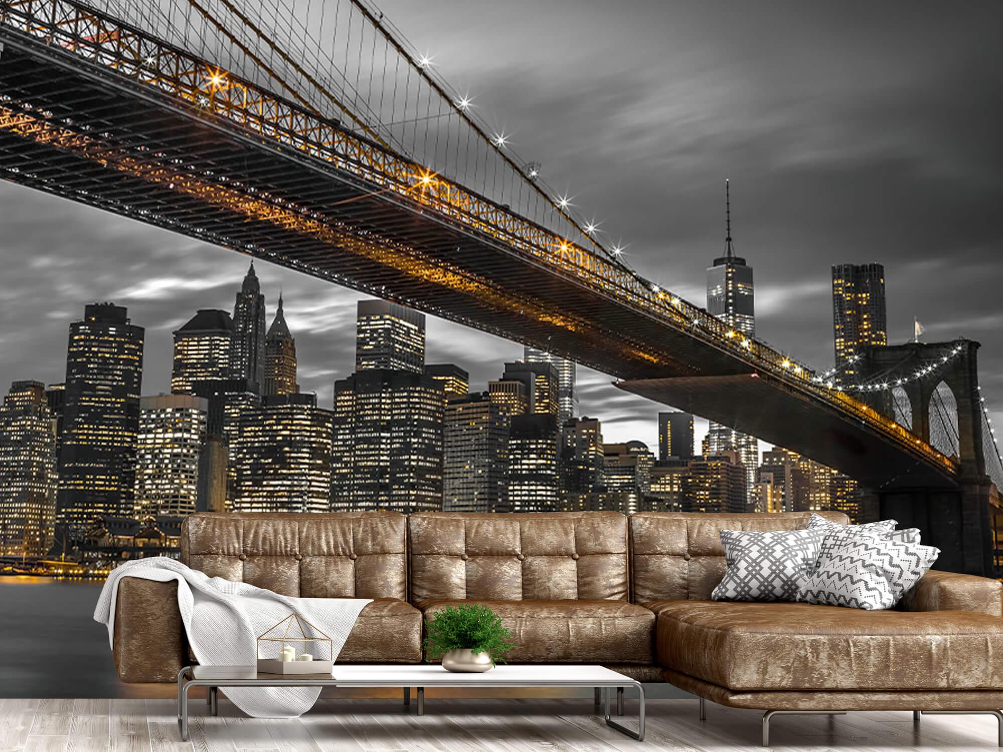 Pont de Brooklyn, New York 12