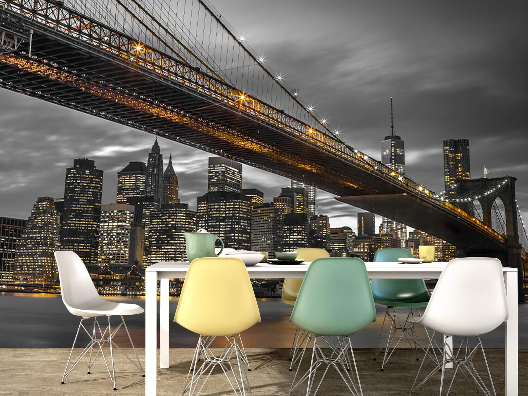 Pont de Brooklyn, New York 13