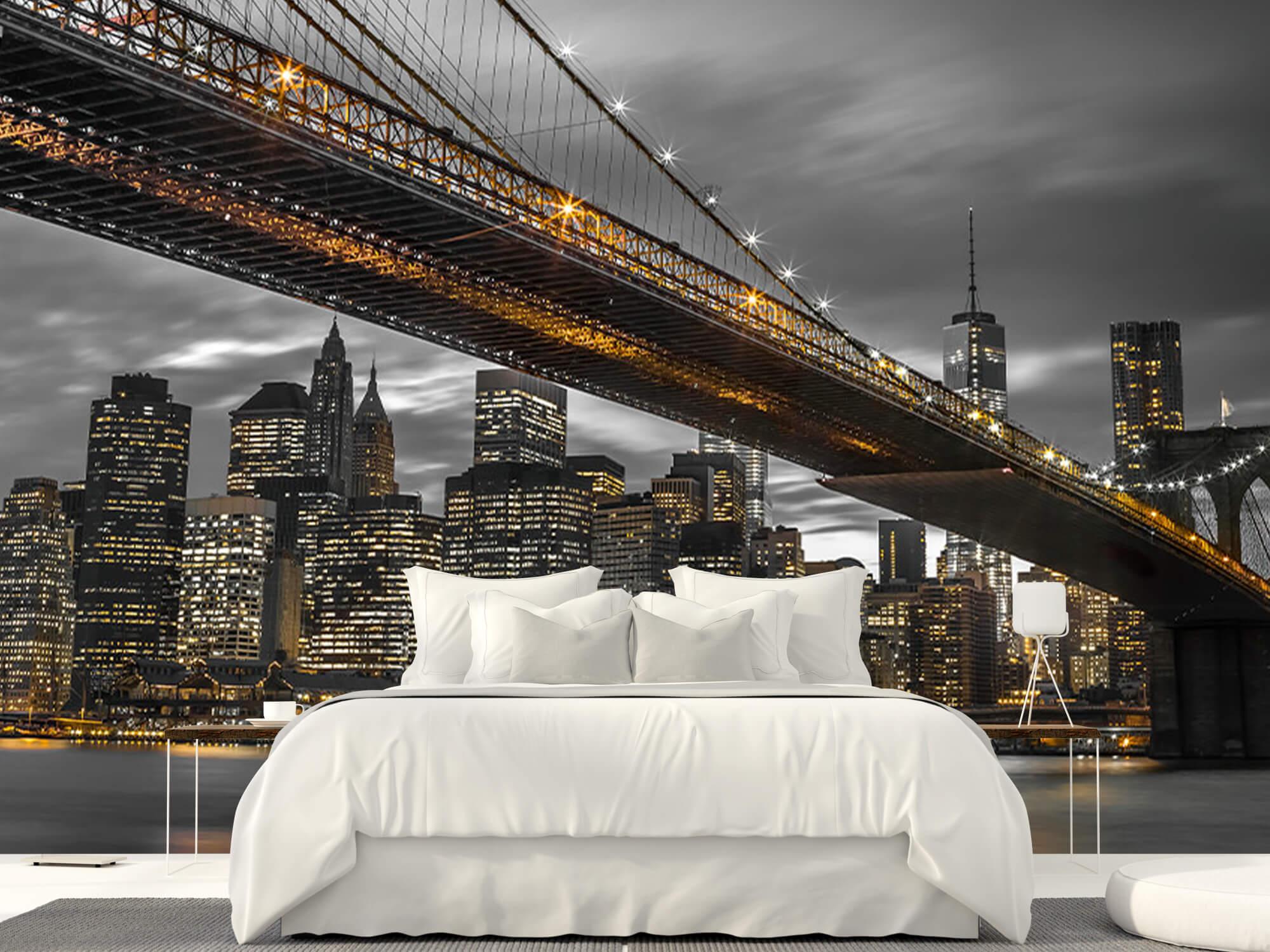Pont de Brooklyn, New York 19