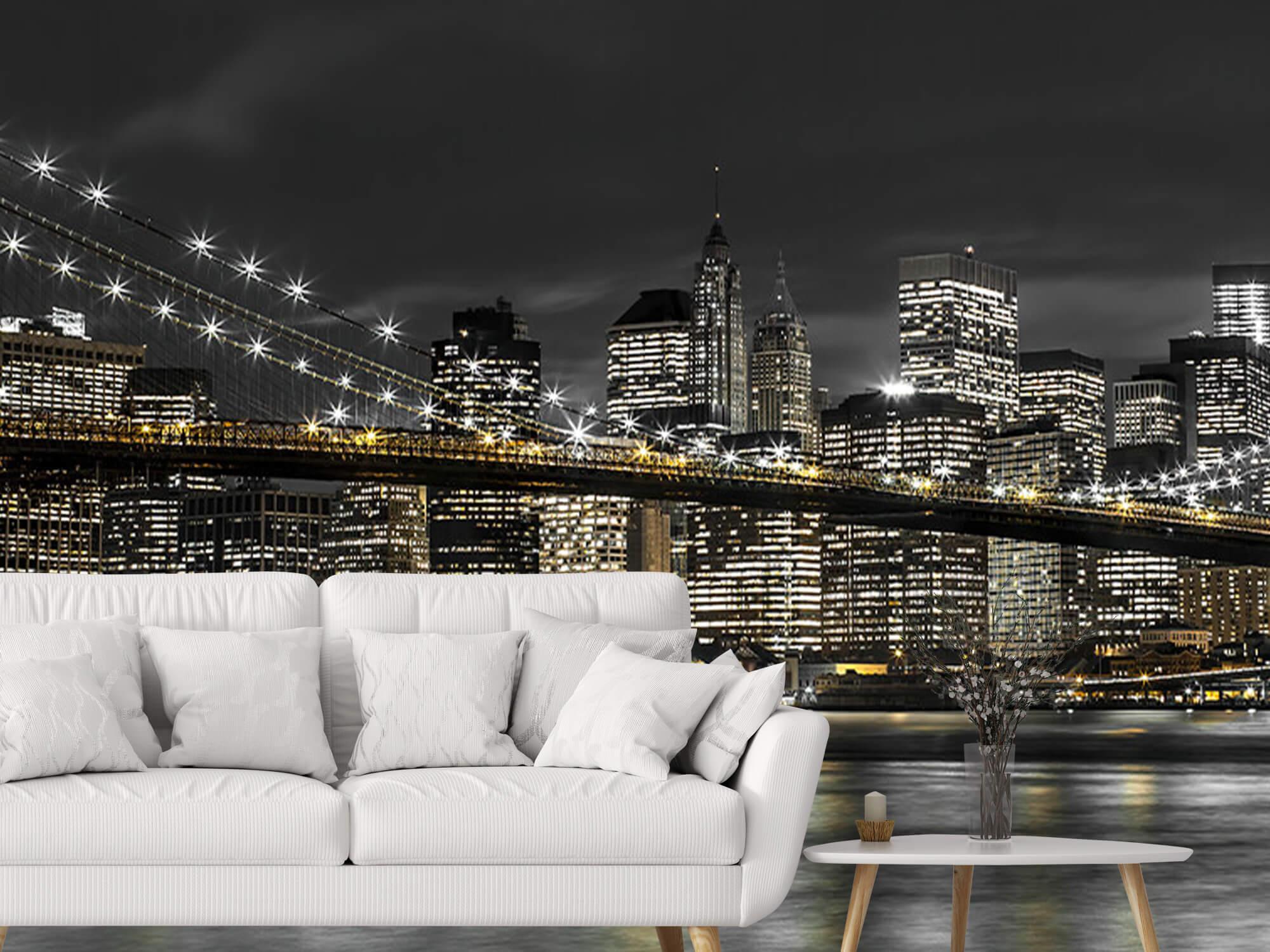 Le pont de Brooklyn la nuit 6