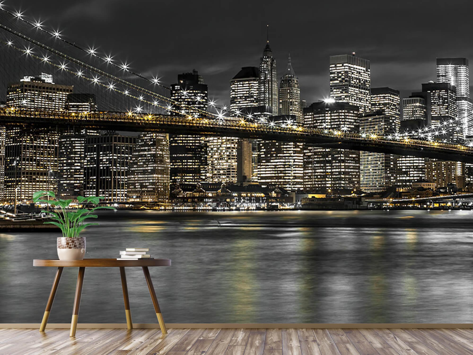 Le pont de Brooklyn la nuit 9