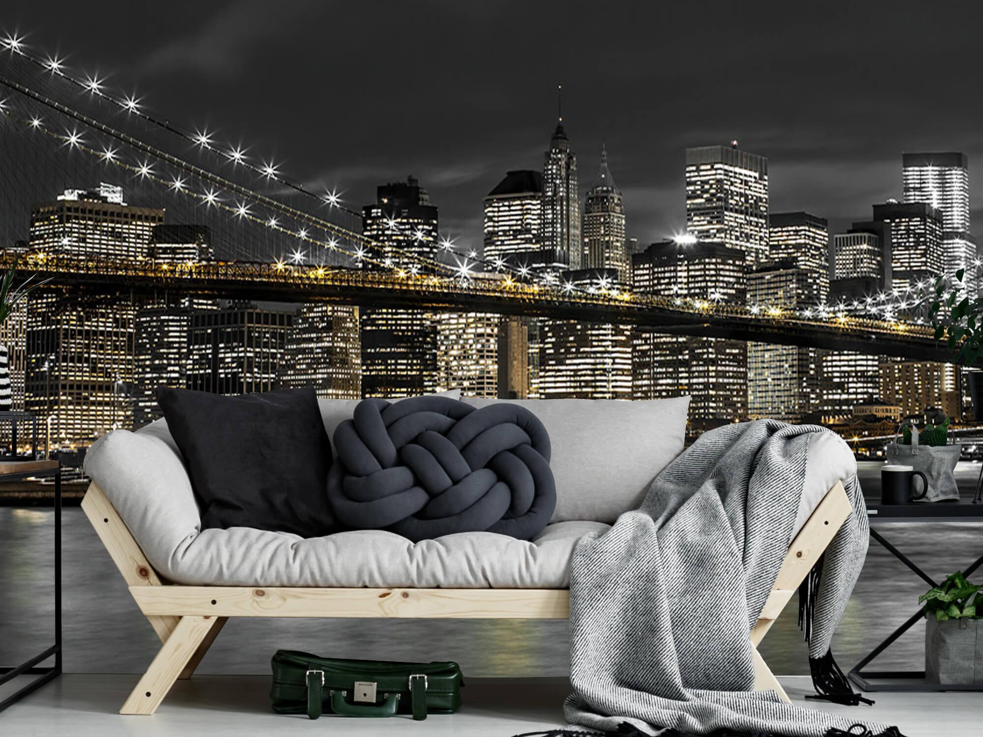 Le pont de Brooklyn la nuit 10