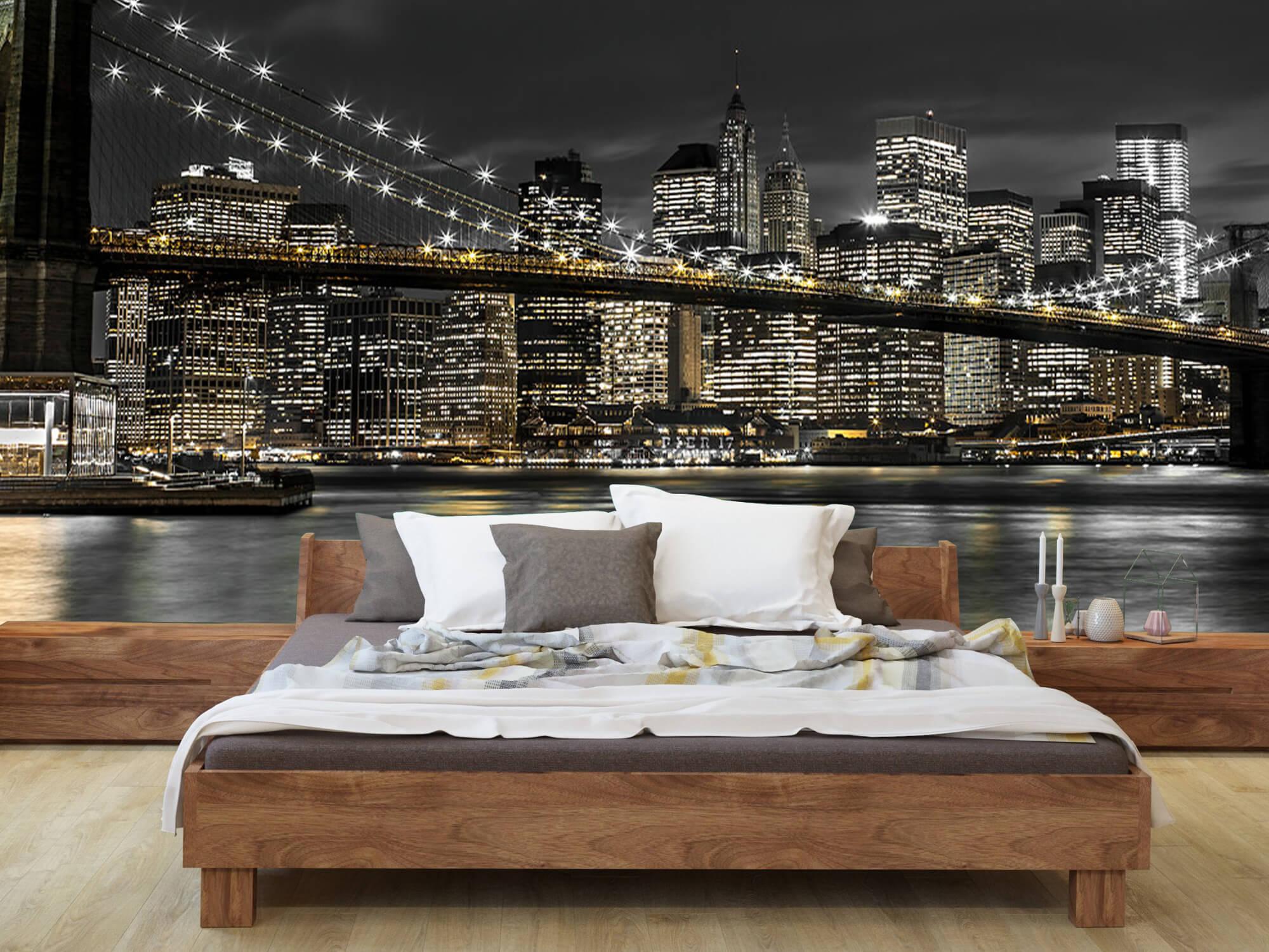 Le pont de Brooklyn la nuit 7