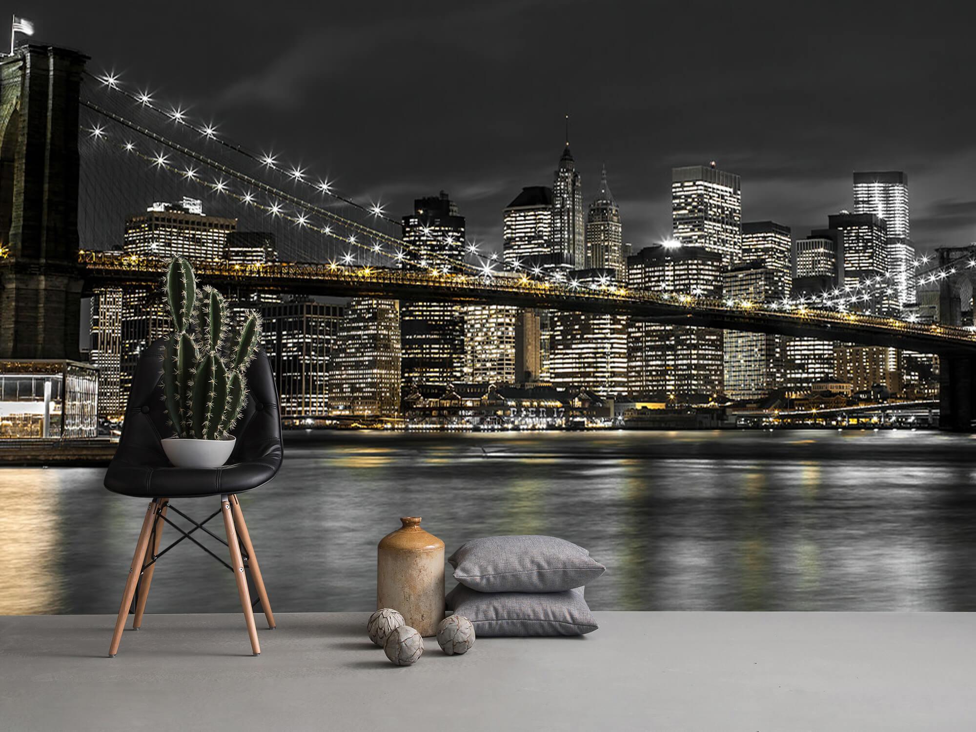 Le pont de Brooklyn la nuit 15