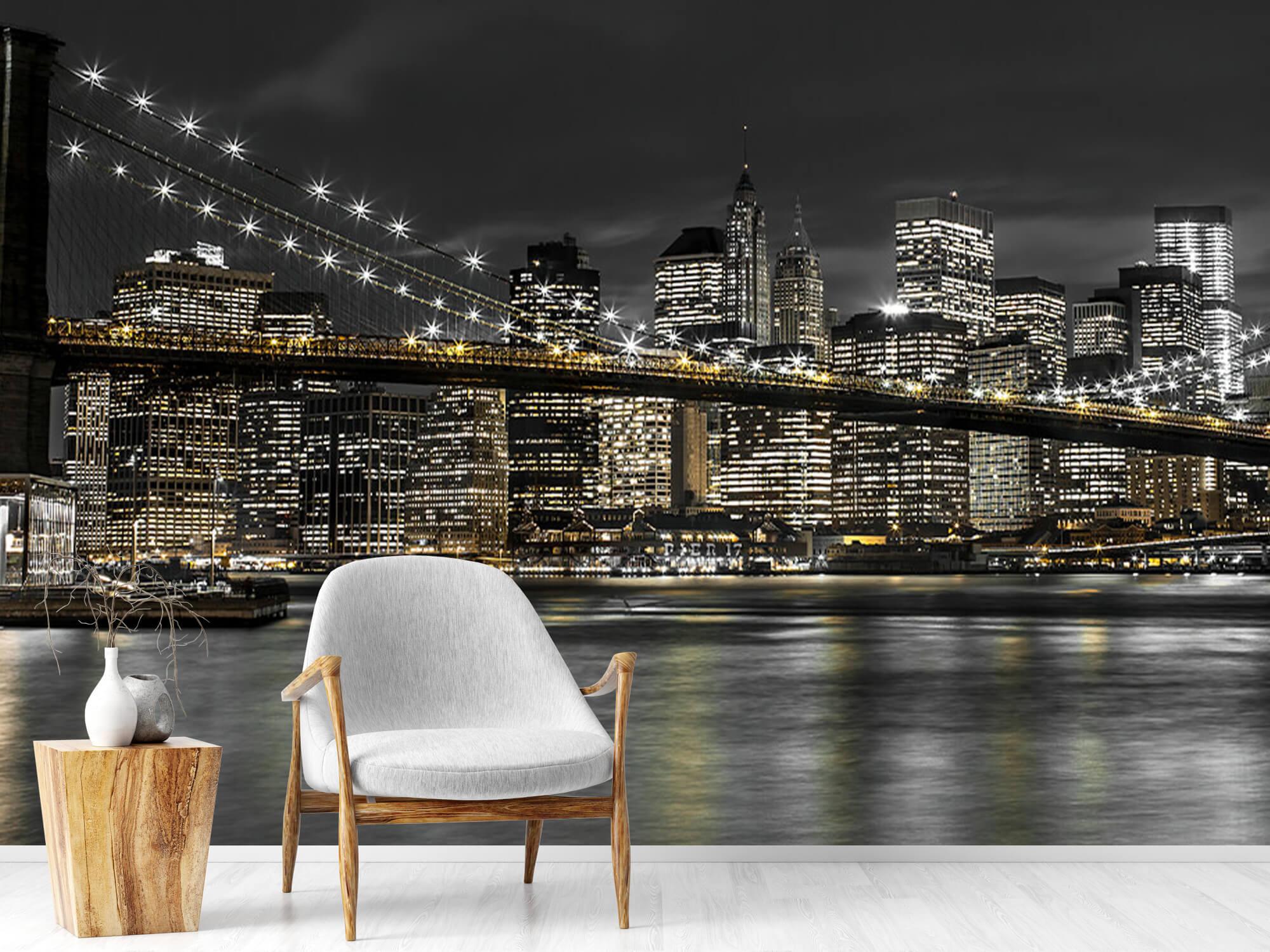 Le pont de Brooklyn la nuit 19
