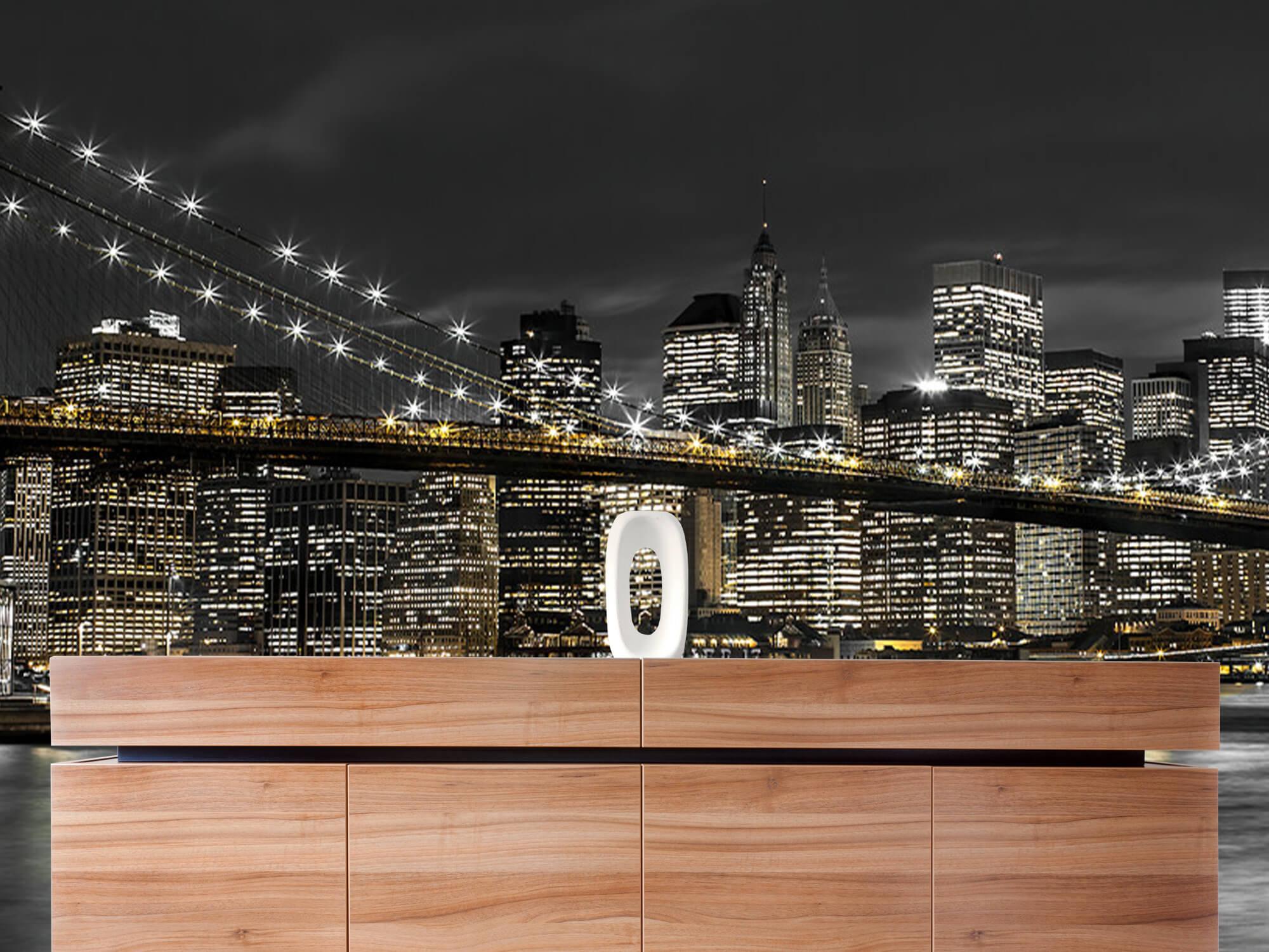 Le pont de Brooklyn la nuit 22