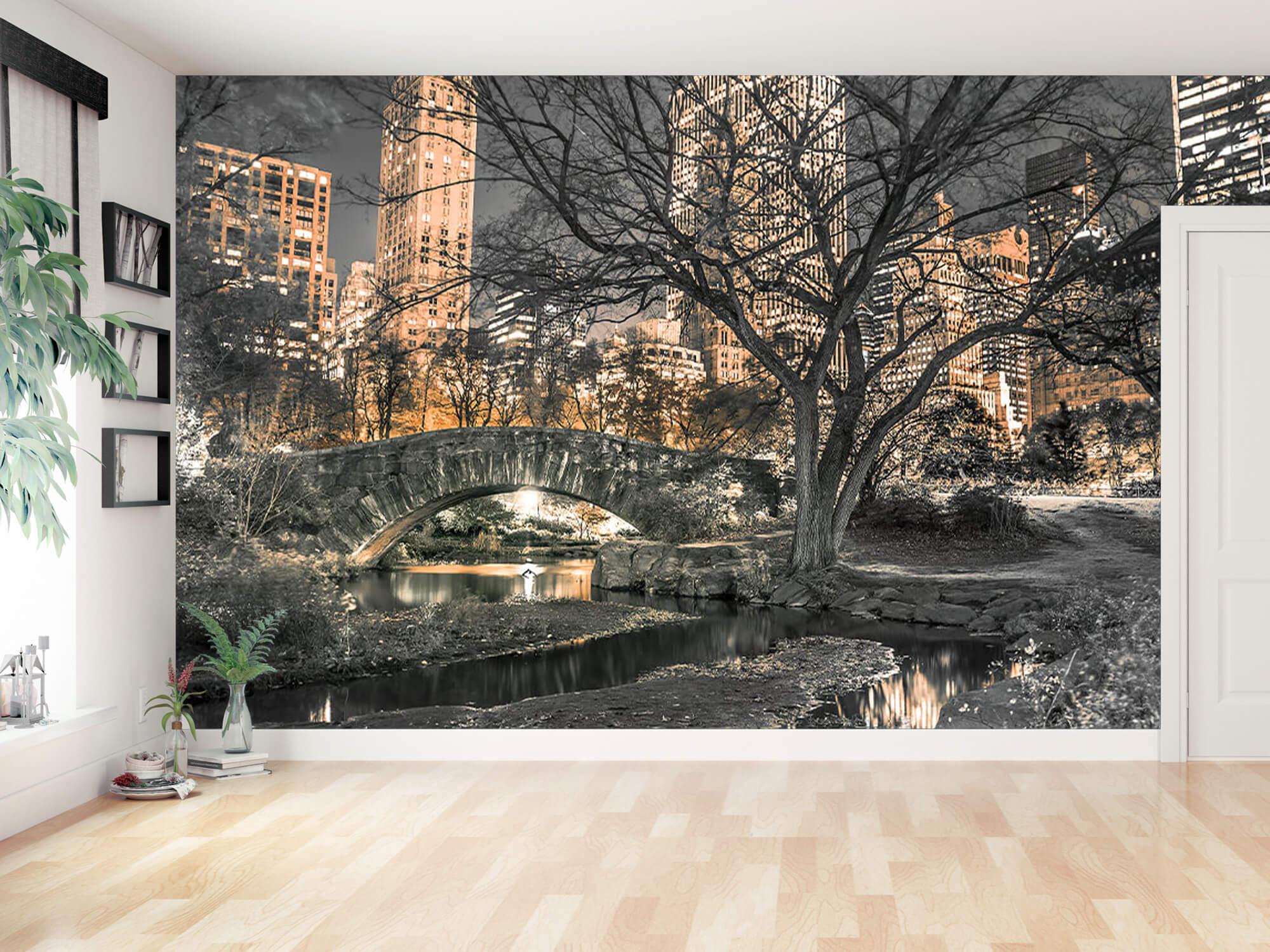 Central park le soir 6