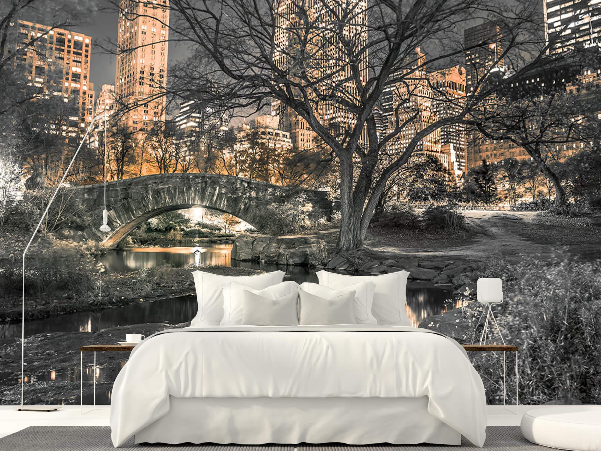 Central park le soir 15