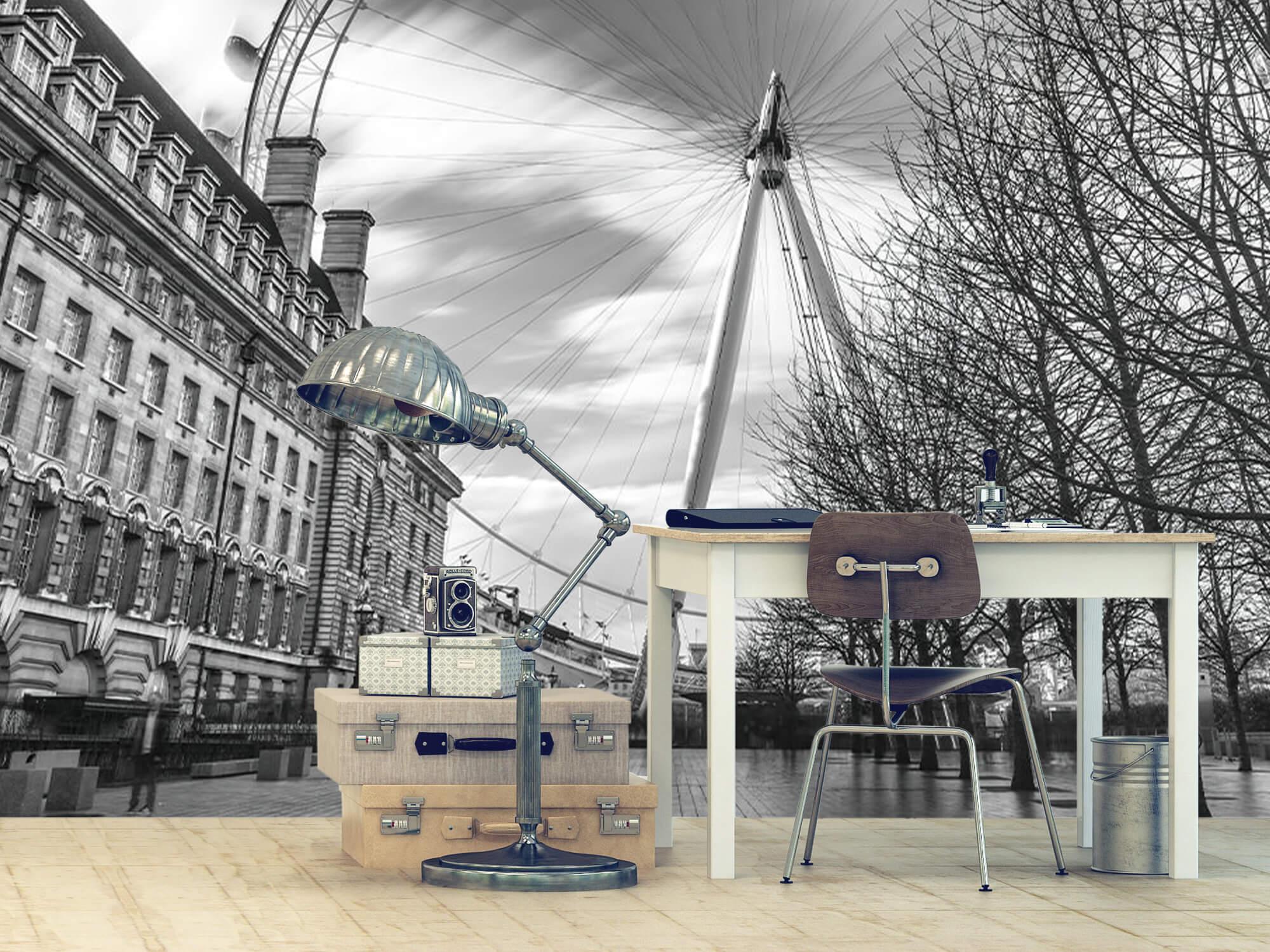 Grande roue à Londres 10