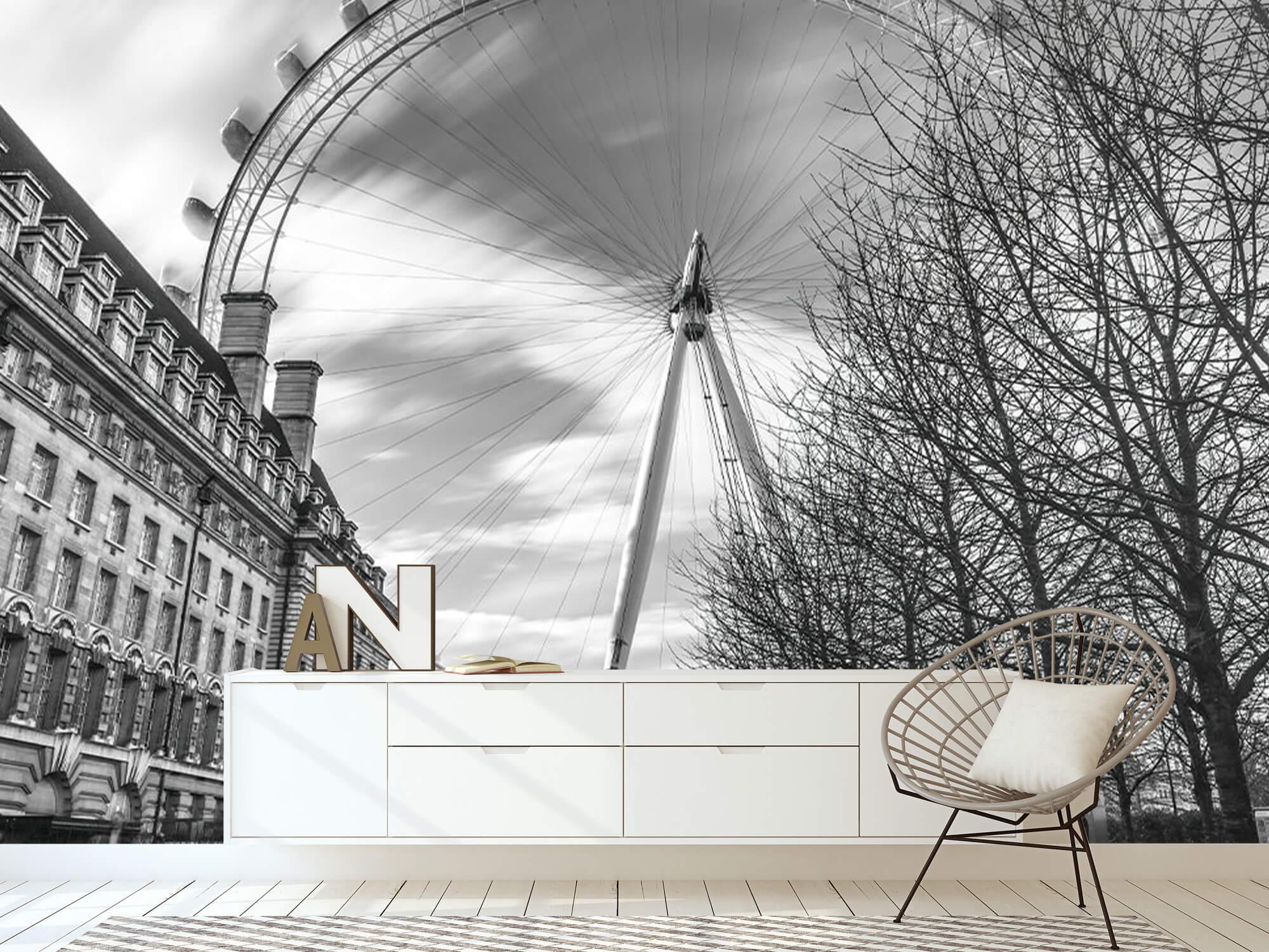 Grande roue à Londres 19