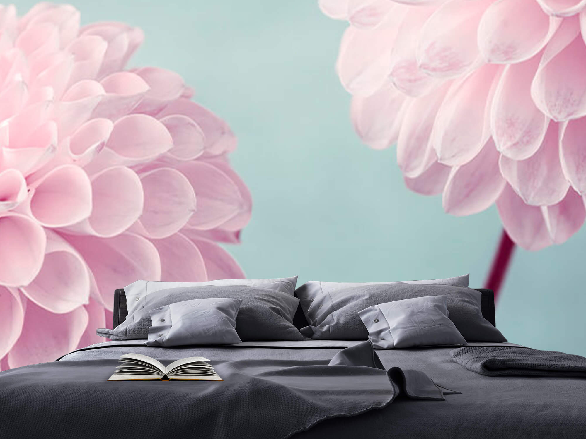 Deux fleurs de Dahlia 14