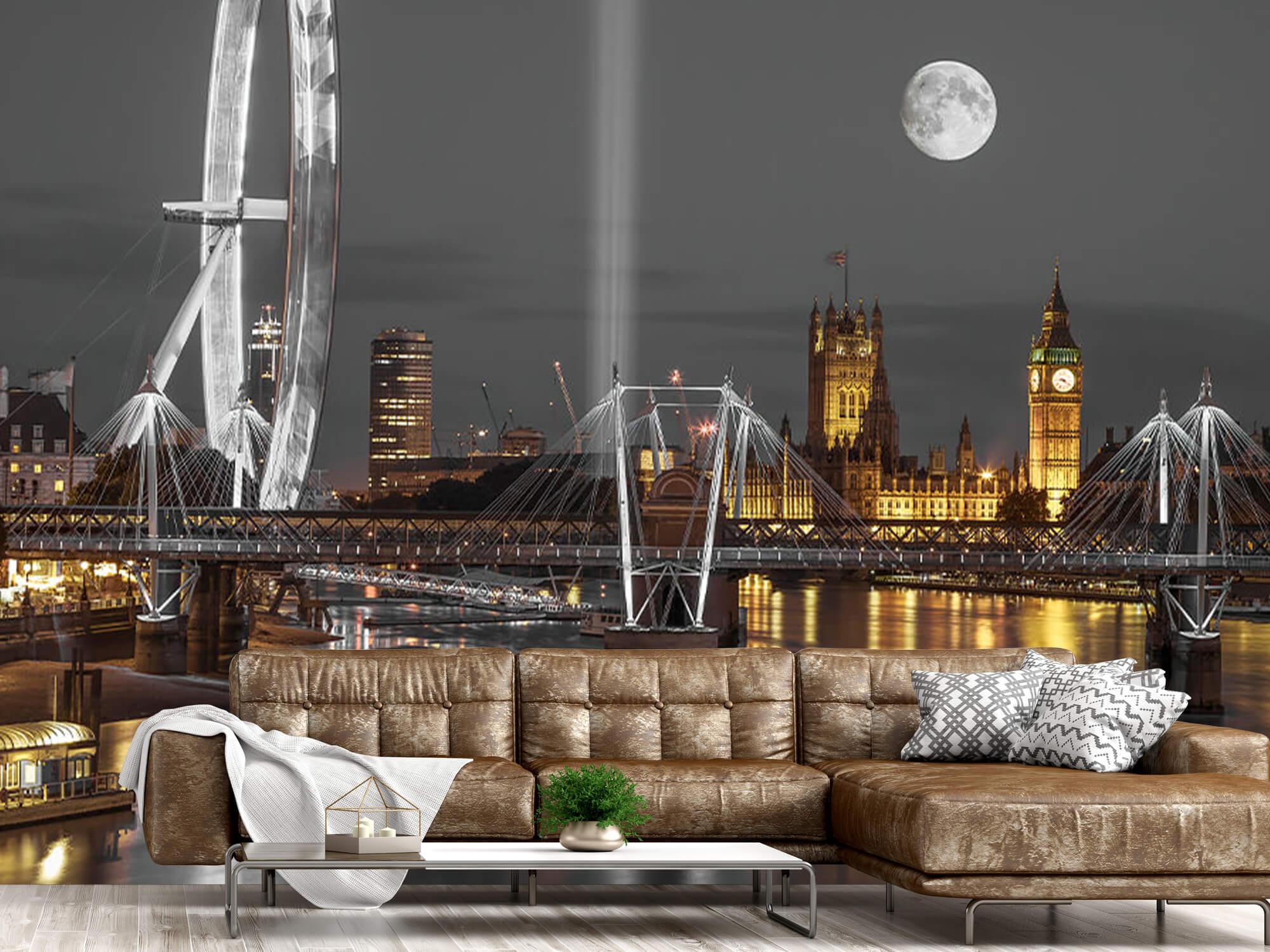 Westminster en soirée 9