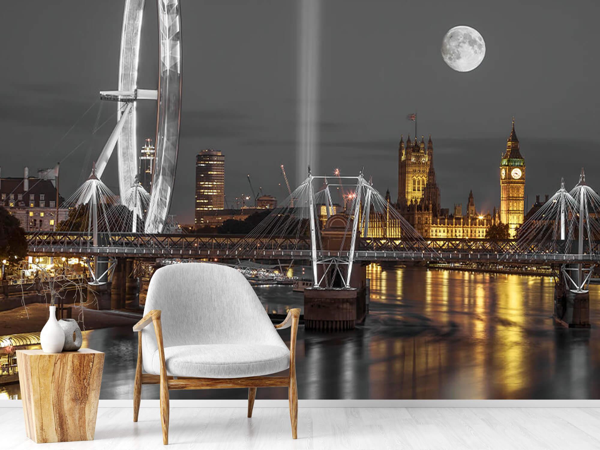 Westminster en soirée 19