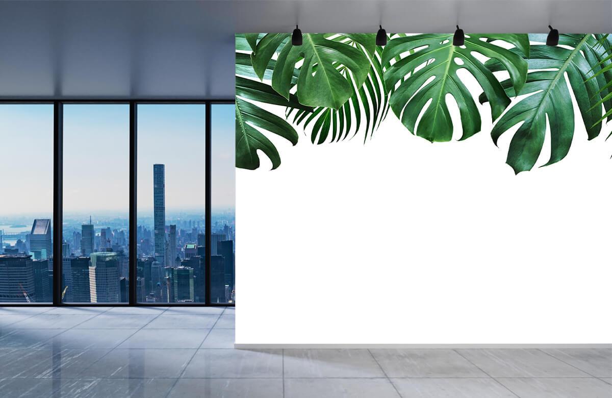 Plantes tropicales 4