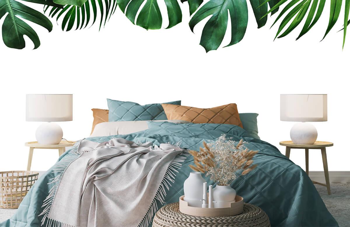 Plantes tropicales 6