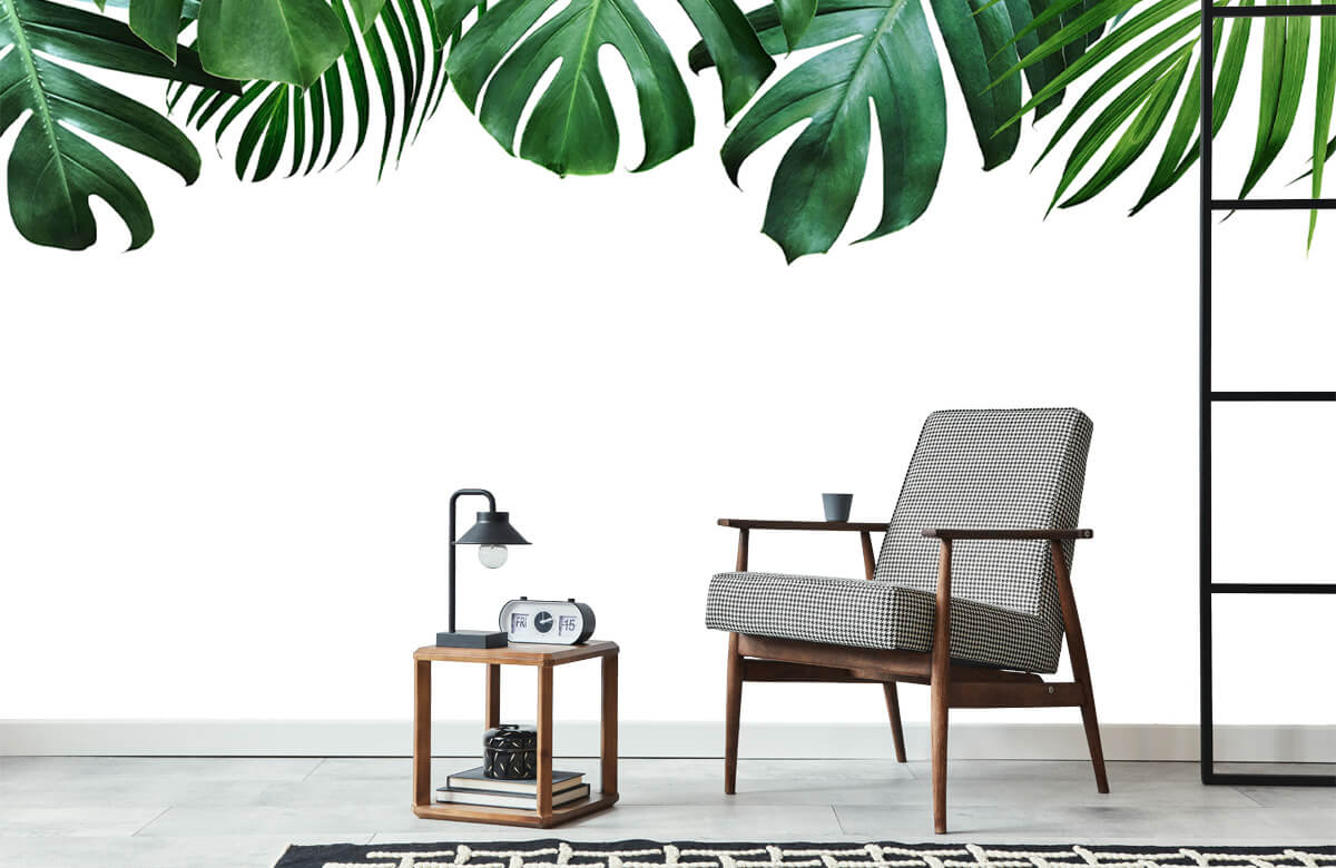 Plantes tropicales 7