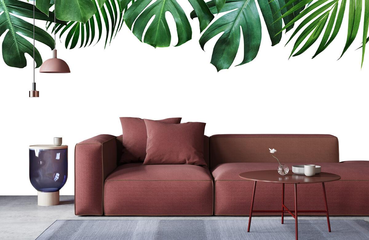 Plantes tropicales 8