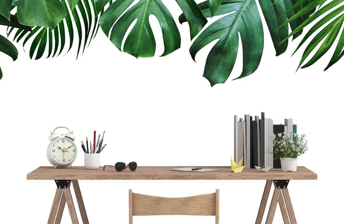 Plantes tropicales 9