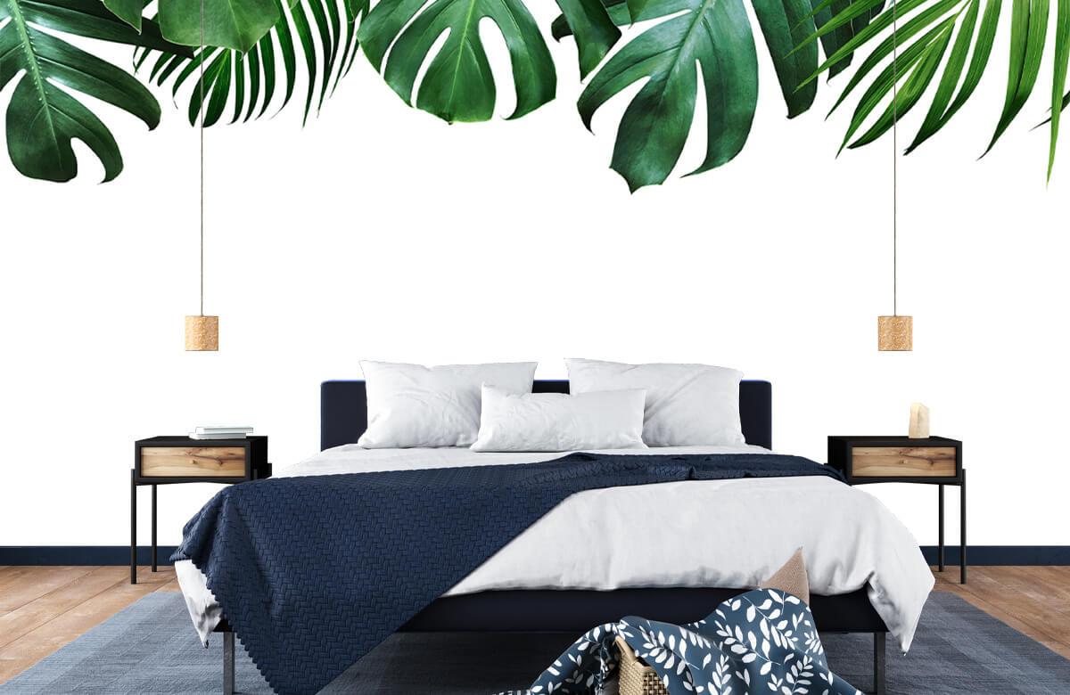 Plantes tropicales 5