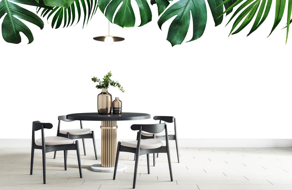 Plantes tropicales 10