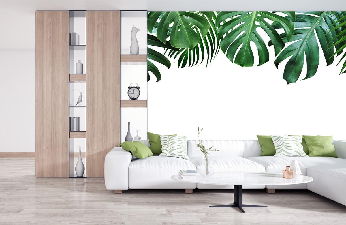 Plantes tropicales 3